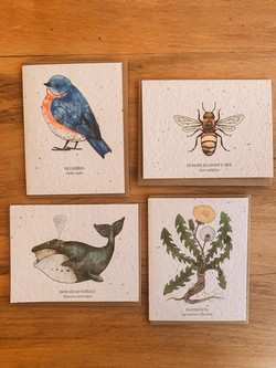 Greeting Cards With Seeds